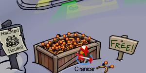 Pumpkin Antennae